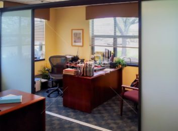 black frosted office divider solo